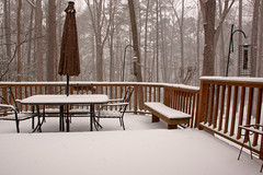 Feb 12 2014 Snow storm (7) (tommaync) Tags: trees snow nature umbrella nc nikon chairs snowstorm northcarolina deck february feeders snowfall flakes birdfeeders 2014 chathamcounty d40