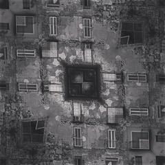 (Kispio®) Tags: square willow squareformat mirrored twisted casteddu digitalmirror instagramapp uploaded:by=instagram kispio® kispioor