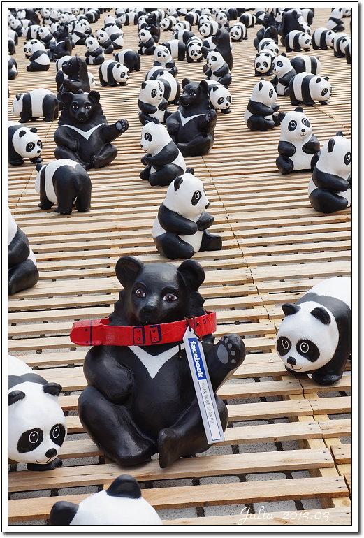 1600貓熊世界之旅 (7)