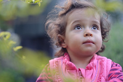Look, into the future (fewfires) Tags: portrait plants blur cute girl look garden hair hope eyes infant pretty dof child bokeh expression young adorable 85mm naturallight future dreamy growing younggirl shallowdepthoffield