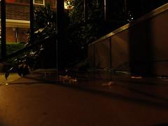 steps at south end of gascoyne house e9 at night, 2014-04-08, 00-46-40 (tributory) Tags: urban london wet leaves rain night stairs dark puddle lights bush apartments estate steel steps rail flats tiles housing blocks hackney e9 eastlondon residents landlord socialhousing tenants sociallandlord