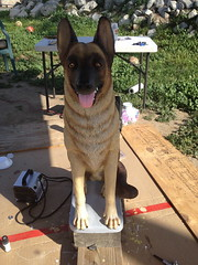 German Shepherd State - AFTER Front (sillysyd) Tags: dog art statue garden painting paint shepherd cement wip german restoration process airbrush