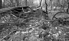 End of the Road (bojabee) Tags: trees blackandwhite black texture car wheel forest scotland rust steering minolta escocia derelict dereliction ecosse blancetnoir bojabee minolta24mm28mdrokkor minolta24mmmdrokkor