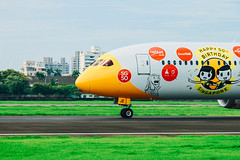 _MG_8904 (waychen_c) Tags: airplane rckh khh boeing 787 7879 dreamliner scoot aircraft
