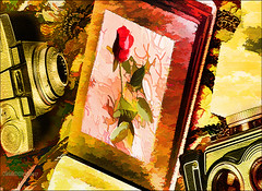 Fashion camera style. (♣Cleide@.♣) Tags: © ♣cleide♣ brazil 2017 photo art digital ps6 texture painting fashion camara flower rose artdigital exotic netartii sotn awardtree