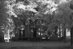 Nolan House in IR (Scott Farrar - dsfdawg) Tags: nolan house abandoned abandon forgotten georgia exploring old ir filter sony alpha plantation trees black white mansion south southern