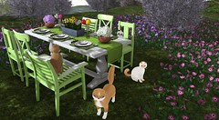 Dine in Style with ::NEWCHURCH:: (satorimarat) Tags: newchurch littlebranch kittycats cats cat furnishings furniture shopping on9 decor decorating outdoor kitty kitties