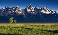 Mighty Tetons (Ryan C Wright) Tags: usa mountains jackson wyoming tetons grandteton wy naturephotography grandtetonnationalpark landscapephotography mormonrow antelopeflats tetonbridger wyomingnaturephotos photosofgrandtetonnationalpark