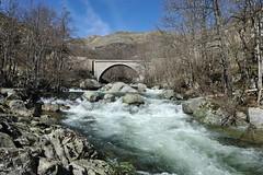 Rivière - Tarn Pont de Montvert