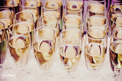 "Wedding Drinks • <a style=""font-size:0.8em;"" href=""https://www.flickr.com/photos/41772031@N08/9289586841/"" target=""_blank"">View on Flickr</a>"