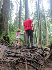 Tackling gnarly terrain (Ruth and Dave) Tags: trees dave forest rainforest child hiking path father daughter roots trail deepcove holdinghands rough trunks catrin quarryrocktrail