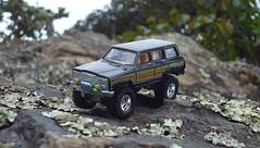 Jeep Wagoneer (Matheus_Lourenço) Tags: boulevard jeep offroad hotwheels wagoneer matheuslourenço