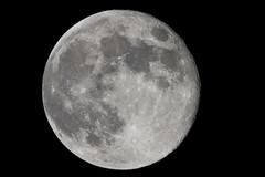 Earth's Companion (Djenzen) Tags: moon canon jeroen nightsky universe jansen maan universum 40d nachthemel