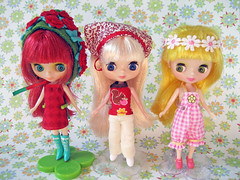 239/365 sweet petites