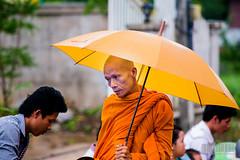 Laos: Dancing in the rain ? (Arnau P) Tags: orange rain umbrella monk monks giving laos alms aisa almsgiving luangprabank