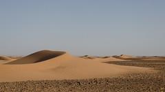 Where Sahara begins (Nico.H.) Tags: travel sahara sand desert dunes morocco erg mhamid chigaga