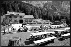 Dolomiti - Malga Venegiota bianco nero (Rodolfo Bontempi photos (800.000 views)) Tags: bw panorama film colors analog photography photo nikon flickr foto kodak 14 great photographers bn val mm f80 fotografia bianco nero bianconero paesaggio dolomiti rodolfo analogica fotografi pellicola malga bontempi samyang colorplus veneggia venegiota