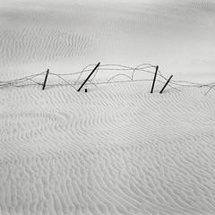 Fence, Oregon Coast (austin granger) Tags: film lines fence square lost wind time buried decay patterns dunes property oregoncoast ripples barbwire drift subsumed gf670 austingranger