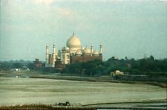 Agra Red Fort आगरा का किला Uttar Pradesh India Taj Mahal and Yamuna River View Feb 1990 081 (photographer695) Tags: taj agra mahal india red fort आगरा का किला uttar pradesh yamuna river view feb 1990