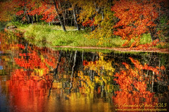 Double the Pleasure! (sminky_pinky100 (In and Out)) Tags: travel autumn canada fall tourism reflections river landscape novascotia vibrant scenic colourful omot cans2s masterclasselite thenewmasterclass masterclassexhibtion