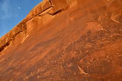 Where is the Kokopelli? (ladigue_99) Tags: utah navajo kokopelli hopi bluff rockart incisionirupestri ladigue99 petroglifi nativeamericancultures sandislandpetroglyphs