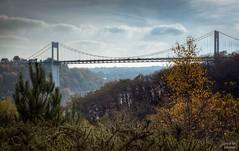 Bretagne Bridge (Un regard en photo - Pierre Photos) Tags: bridge autumn cars nature automne dynamic bretagne pont autoroute range aire hdr hight vilaine