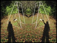 21 Dec - Swinging Shadows... (Reflective Kiwi %-)) Tags: christmas shadow project garden december shadows diary memories swing next enjoy montage mirrorimage now generation bygones 2013 mumsbackyard decemberdiary2013 21dec2013