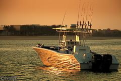 docked to reflect! (Cherry El Beblawy) Tags: sunset dubai yacht palmjumeirah