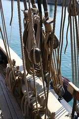 Barca41 (photoalfiero) Tags: ocean sea water boat barco sailing ship barcos liguria sails streetphotography nave sail sailboats vela navegar marinas veliero tirreno barchedepoca barcheavela tallschip lesignoredelmare lestradeparlanoimuriurlano