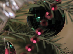 Christmas balls (cod_gabriel) Tags: brad natal navidad beads bokeh balls noel christmastree christmasballs fir jul nol weihnachtsbaum bauble natale baubles tannenbaum firtree karcsony shallowdepthoffield joulu shallowdof shallowfocus boenarodzenie vnoce weihnachtskugeln  kerstballen christmasbaubles christmasbauble bombki  palledinatale bolasdenatal globuri boulesdenol  bolasdenavidad  mrgele pomdecrciun joulupallot    bolasdarvoredenatal  karcsonyfalabdk   natalbolapohon