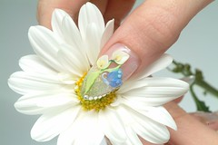 "Nail Design <a style=""margin-left:10px; font-size:0.8em;"" href=""http://www.flickr.com/photos/113576083@N04/11792202233/"" target=""_blank"">@flickr</a>"