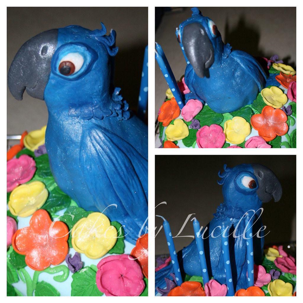 Edible Cake Images Launceston : The World s Best Photos of party and sugarflowers - Flickr ...
