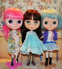 Ginny, Sierra Nevada and Agnes