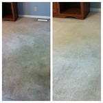 "Carpet cleaning Greenville sc <a style=""margin-left:10px; font-size:0.8em;"" href=""http://www.flickr.com/photos/113741555@N07/12346850203/"" target=""_blank"">@flickr</a>"