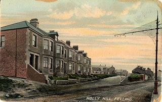 holly hill, felling, gateshead - 2