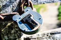(Damien Cox) Tags: wood uk metal nikon rust lock grain padlock squire damiencox dcoxphotographycom