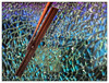 wipeout (Boris Mrdja) Tags: abstract detail texture broken glass crack proof bullet hummer wipe beograd cracked cpl wiper kalemegdan staklo tekstura brisac httpborismrdjadaportfoliocom
