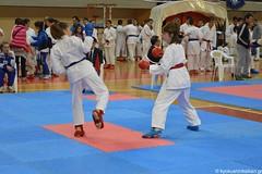 STEFANOU LARISA 26-4-2015 - 10 of 95