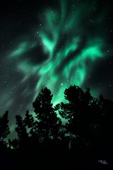 Spirit of The North (H.B. Mejia) Tags: longexposure nightphotography canada green night dark spectacular nationalpark colorful jasper nighttime alberta stunning northernlights auroraborealis borealis nighttimephotography longexposurephotography spiritofthenorth hbmejiaphotography