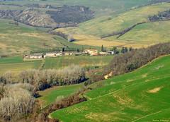 Tuscany landscape near Siena (Darea62) Tags: landscape tuscany cretesenesi nature farm hills panorama green grass trees winter clay cypress paesaggio toscana agriculture