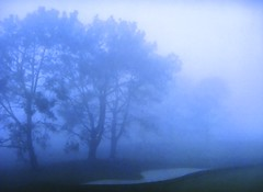 Torrey Pines GC (South) in the Fog & Rain (rbglasson) Tags: california golf landscape tv torreypines lajolla canons5is