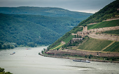 View of the Rhine River Valley from Bingen Germany with Ehrenfels Castle Ruin (mbell1975) Tags: from mist castle rain river germany deutschland boat europe day ship with view cloudy fort ruin cargo rainy german valley schloss rhine fortress rhein barge burg deutsch festung bingen ehrenfels