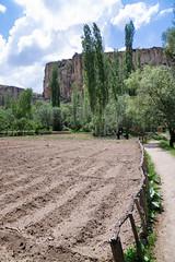 Working the land (Linus Wrn) Tags: leica turkey hiking path canyon valley gorge cappadocia ihlaravalley ihlara ihlaragorge