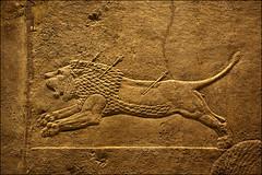 Lion Hunt Reliefs, Palace of Ashurbanial, Nineveh, North Iraq (laheringer) Tags: england london unitedkingdom carving britishmuseum mesopotamia assyrian stolenantiquity
