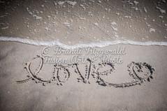 BrandiFitzgerald.LidoBeach020 (brandifitzarts) Tags: newyork beach waves scene longbeach shore eastcoast beachscene sandwriting lidobeach newyorkbeach brandifitzgerald sayingsinsand