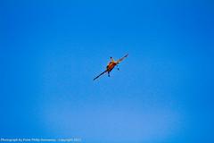 IMG_4356 (peterdomantay) Tags: riyadh saudiarabia rcplanes peterdomantay rchobbyist peterphilipdomantay