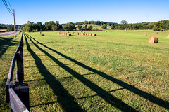 Across the Street (derekbruff) Tags: morning shadow fall field fence franklin tennessee hay bales leadinglines hff williamsoncounty fencefriday