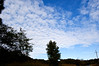 Clouds over NC (1) (tommaync) Tags: blue sky white nature clouds nc nikon september chathamcounty d40 2013