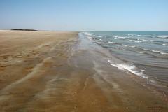 Arabian Sea beach - Kutch, Gujarat (-AX-) Tags: sea mer india arabian plage gj gujarat kachchhkutch