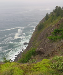 mossy cliffs above the salty sea (carolyn_in_oregon) Tags: oregon coast pacificocean oswaldweststatepark neahkahniemountain